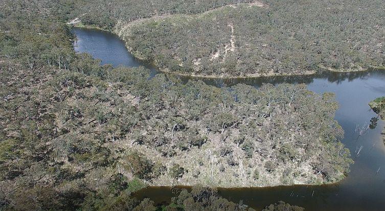 Bush River further upstream